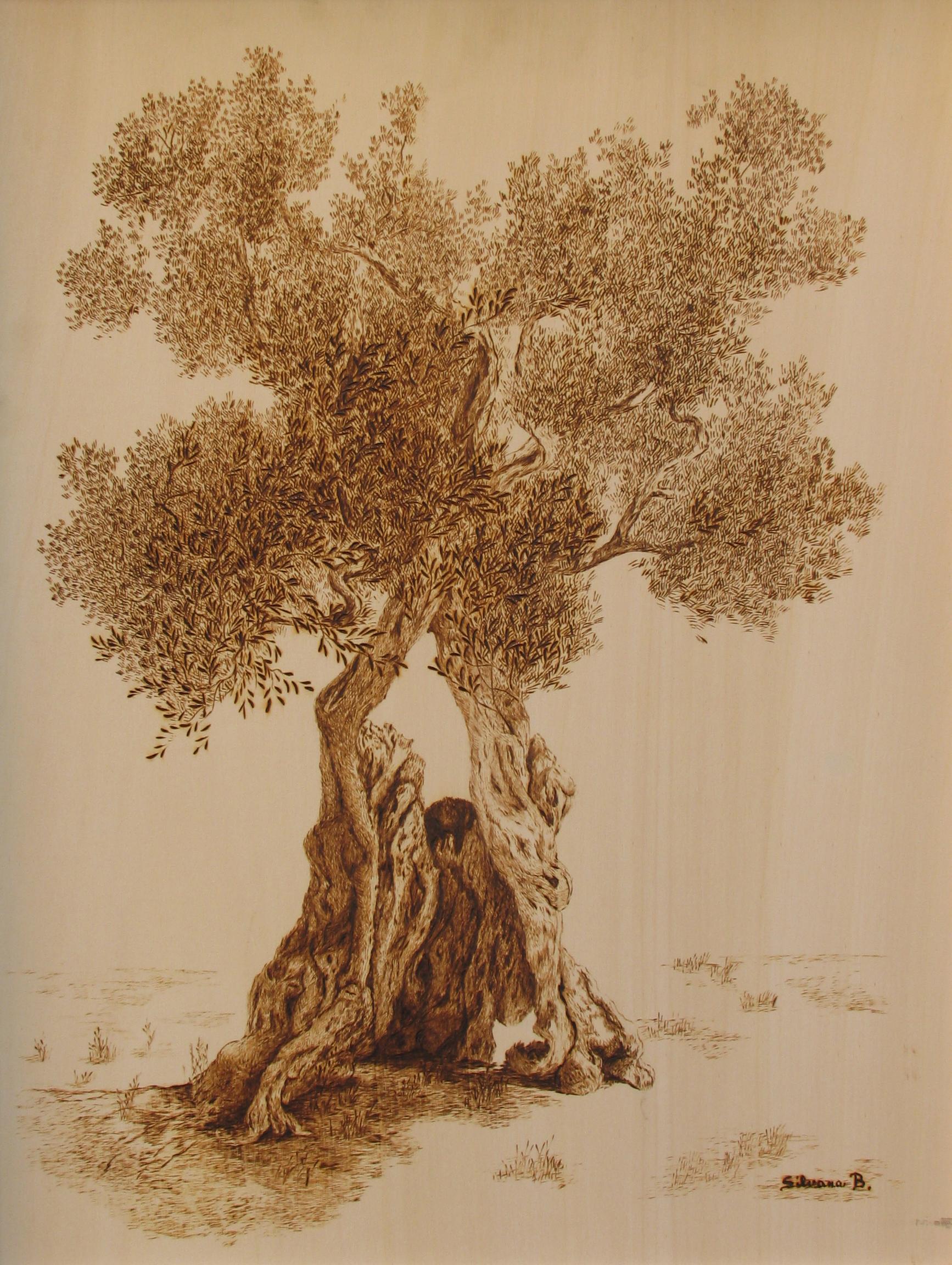 Pirografia su legno - cm. 45x55
